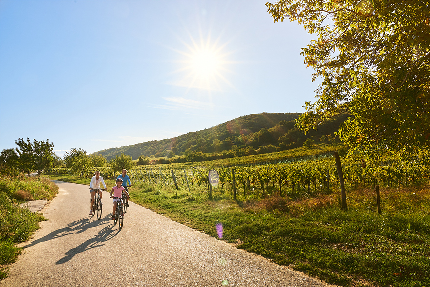 Enjoyable cycling holiday - explore the cycle paths in Burgenland